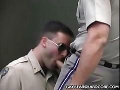 Blarney Slurping Gays